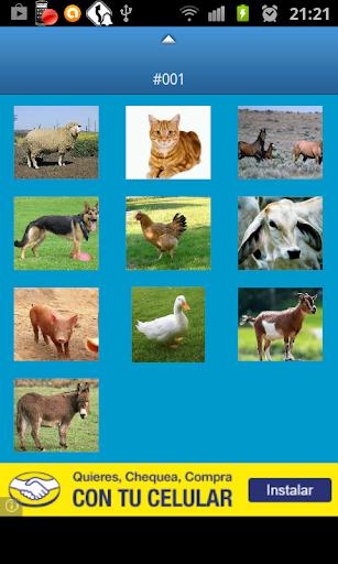 农场动物的叫声