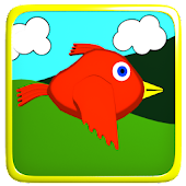 Dizzy Bird