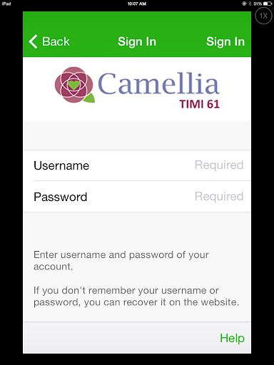 Camellia Timi 61