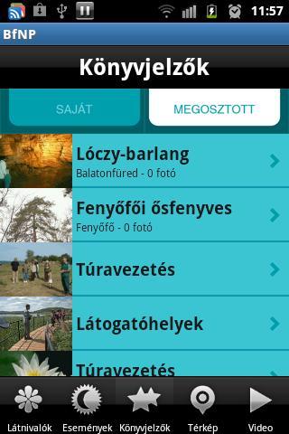 BfNP- screenshot