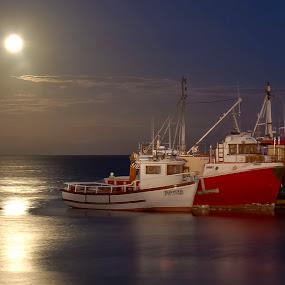 Moonlight Harbour by Adéle van Schalkwyk - Transportation Boats ( reflection, moon, harbour, boats, sea )
