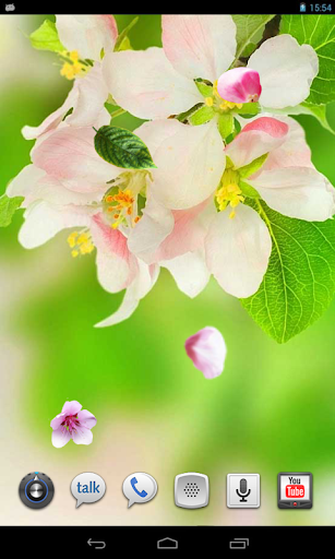 Flowers Spring live wallpaper