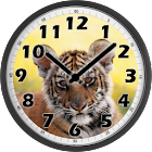 Little Tiger Clock icon