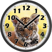 Little Tiger Clock