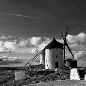 by Alexandru Ciornea - Black & White Landscapes