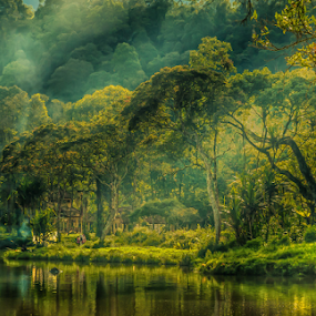 Lake Situgunung by Erry Subhan - Landscapes Waterscapes ( water, sukabumi, wood, waterscape, indonesia, lake, java, tropical forest )