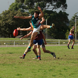 Wheres the Ball by Jefferson Welsh - Sports & Fitness Australian rules football