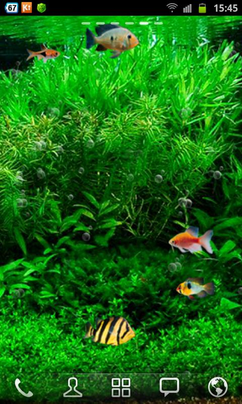 Fish Tank 3d Live Wallpaper - screenshot