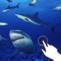Magic touch: Sharks attack icon
