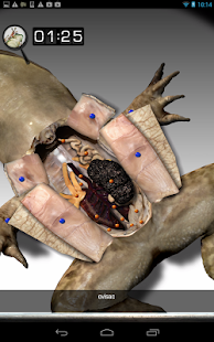 Froguts Frog Dissection - screenshot thumbnail