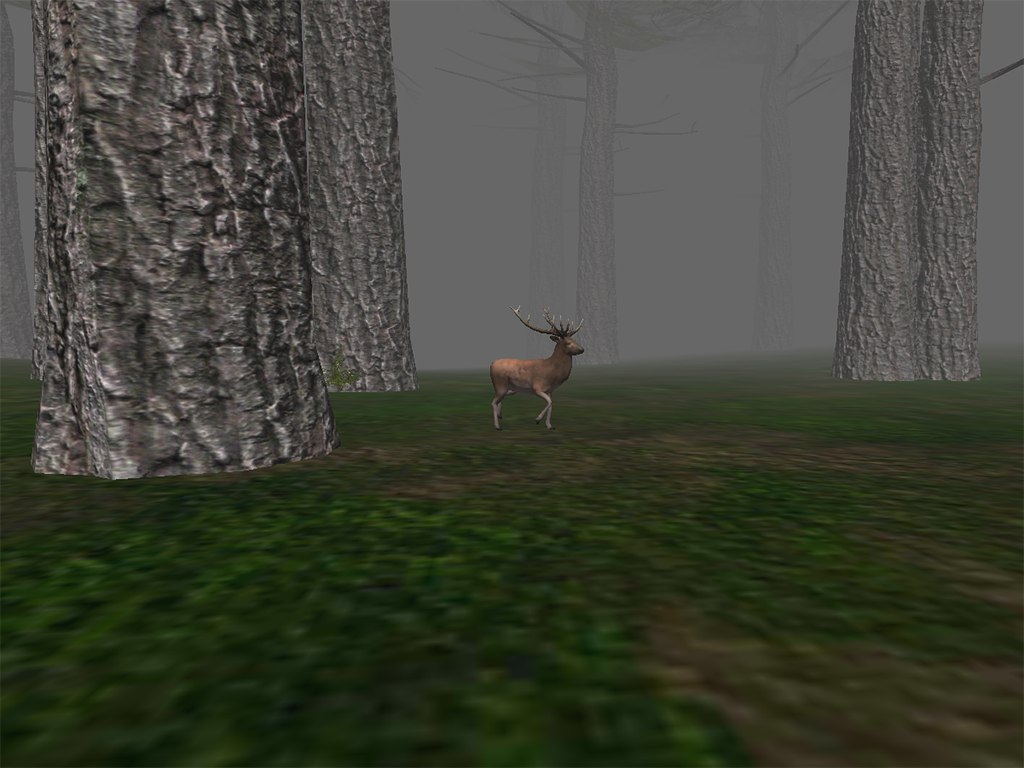 the forest free to play