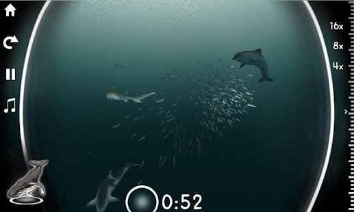 Sardine Run- screenshot thumbnail