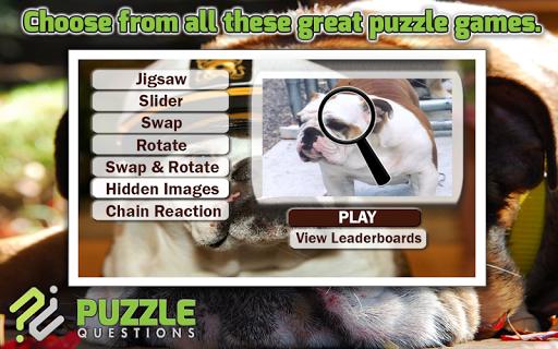 Bulldog Dog Puzzle Games