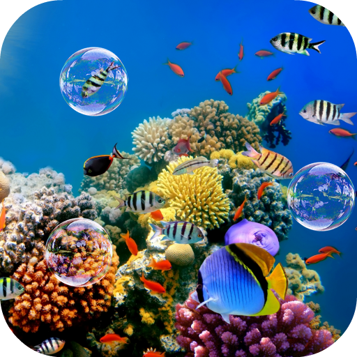 Colorful Tropical Fishes Android APK Download Free By AleX