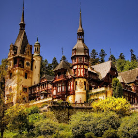 Peles castle by Nicu Hoandra - Buildings & Architecture Public & Historical ( peles, building, arhitecture, castle, spring )
