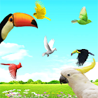 Sky Birds Live Wallpaper icon