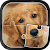 Cute Dogs Jigsaw Puzzle file APK for Gaming PC/PS3/PS4 Smart TV