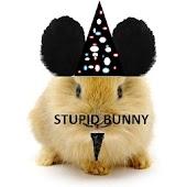 Stupid Bunny