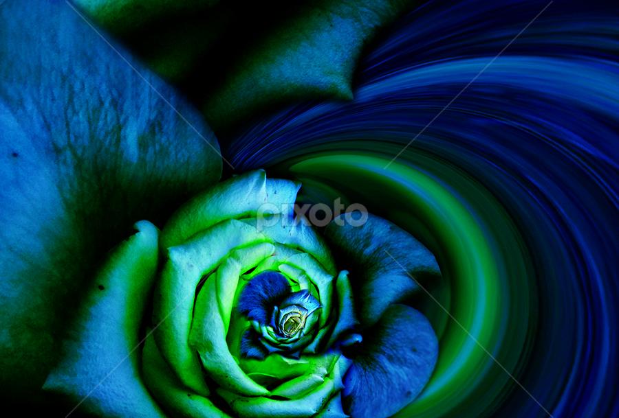 LIGHT IN THE DARKNESS by Carmen Velcic - Digital Art Abstract ( abstract, blue, green, roses, flowers, digital, light, darkness )