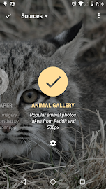 Animal Gallery - Muzei Screenshot 4