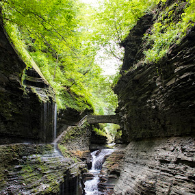 Watkins Glen State Park by Bala Ve - Landscapes Waterscapes ( mountain, nature, trail, new york, watkins glen,  )