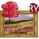 RY Batch Resizer Free