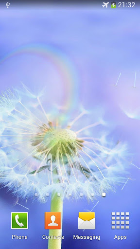 dandelion fly to the sun