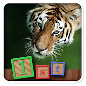 1st Games Kids Wild Animals