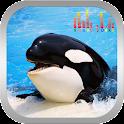 Whale Orca Soundboard icon
