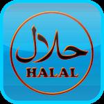 Halal or Haraam E-codes