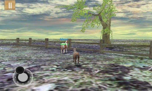 Tame your horse,pony & donkey- screenshot thumbnail