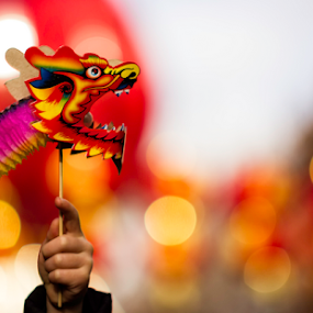 Chinese New Year by Leigh Brooksbank - News & Events World Events ( year of the horse, chinese new year 2014, essex & suffolk photographers, misc )