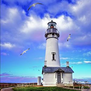 lighthouse_seagulls2.jpg