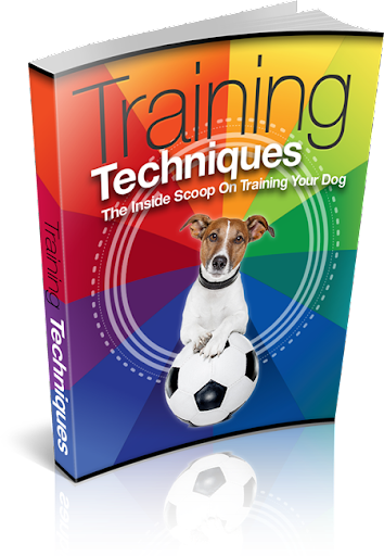 Free Dog Training Tips