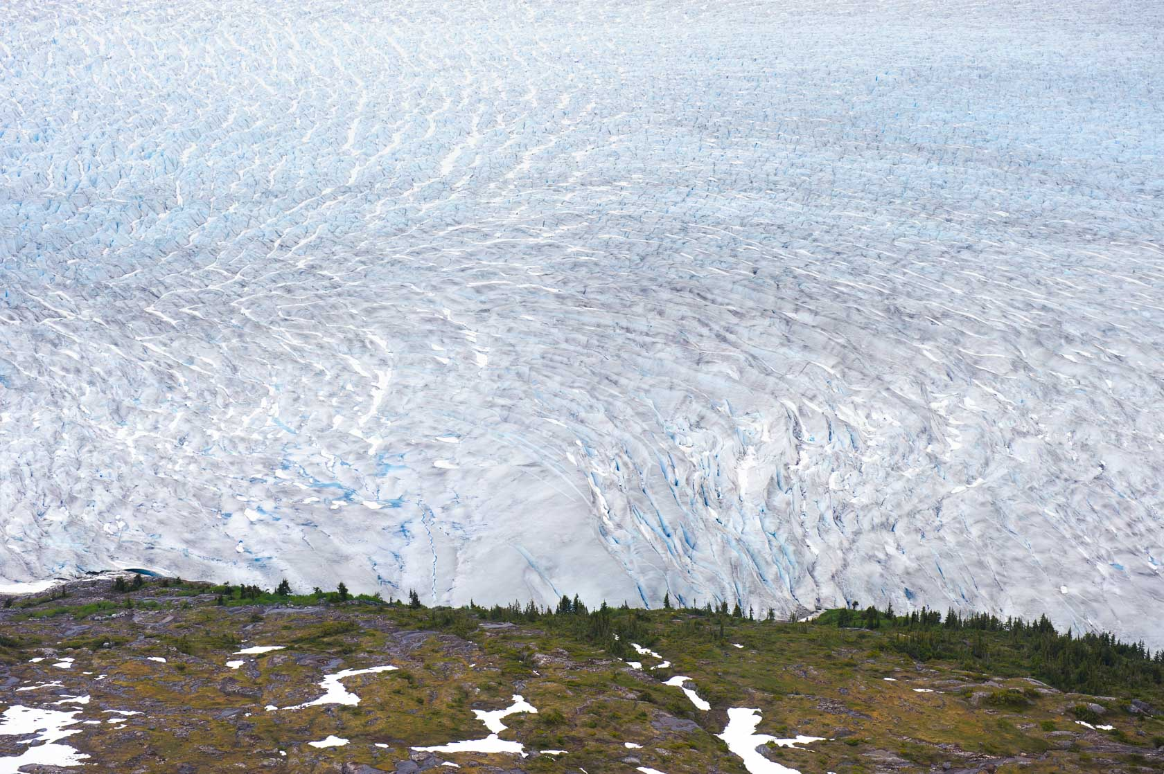 The Taku Glacier, Tongass National Forest