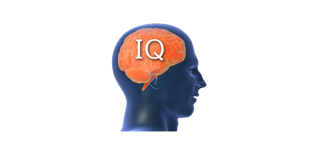 discuss one alternative to iq testing Iq, or intelligence quotient, is a number derived from a standardized intelligence test on the original iq tests, scores were calculated by dividing the individual's mental age by his or her chronological age and then multiplying that number by 100.