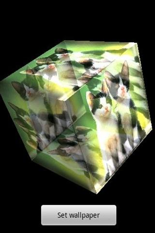 3D cute cat 3- screenshot
