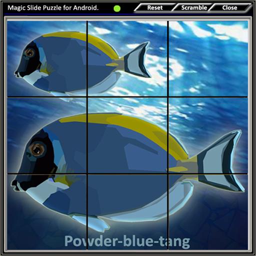 Magic Slide Puzzle A Fishes 2 解謎 LOGO-阿達玩APP