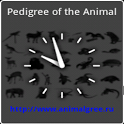 Pedigree of the Animal (D) icon