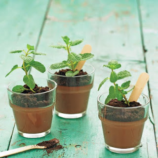 Potted Chocolate-Mint Puddings