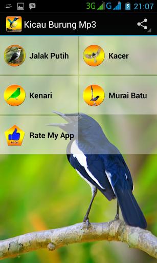 Kicau Burung Mp3
