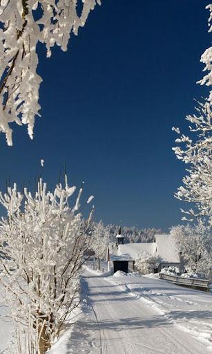 冬季雪動態壁紙高清