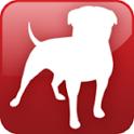Zynga News icon