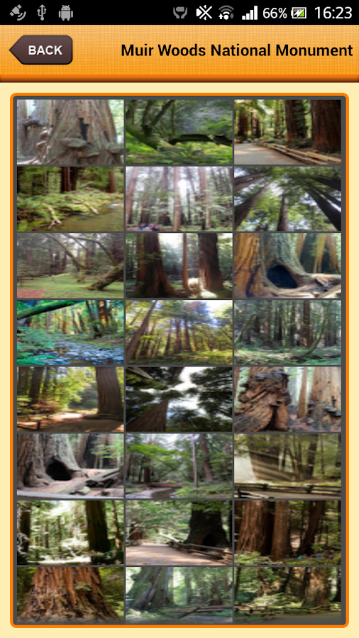 Muir Woods National Monument- screenshot