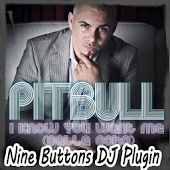 Pitbull-I know you...[NbDJ Plu