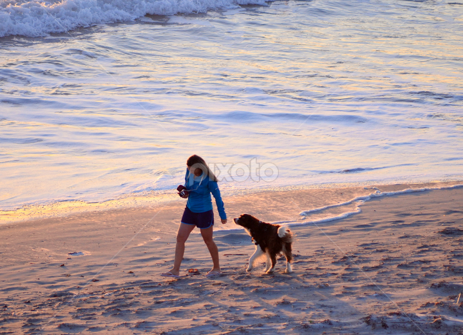 Woman and Her Bestie at Sunset by Jacob Uriel - Landscapes Beaches ( water, sand, sunset, florida, woman, waves, ocean, beach, dog, cocoa beach )