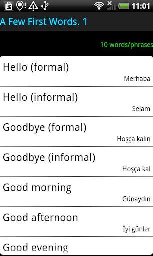 Surface Languages Turkish