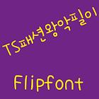 TSfashionking Korean Flipfont icon