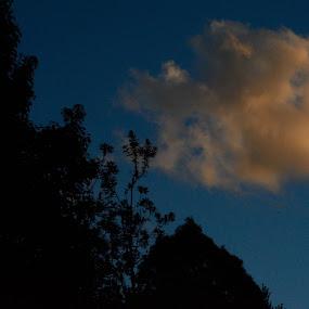 Sunset cloud by Tom Hearn - Landscapes Cloud Formations ( contrast, orange, blue, single cloud, intense )