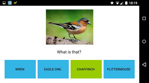 My Own Quiz